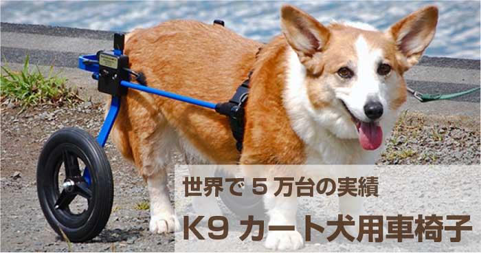 k9カート